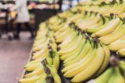 ¿Cuál es la probabilidad de padecer cáncer después de comer una banana?